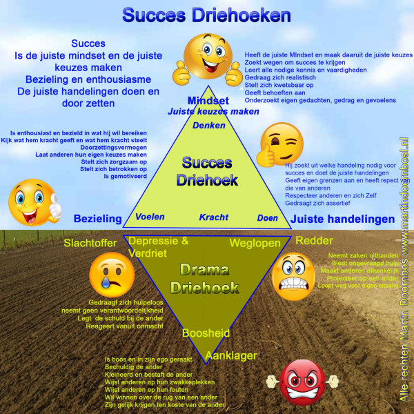de-cursus-succes-is-te-leren